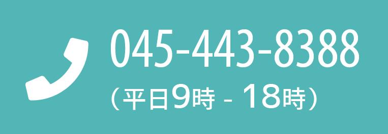 0454438388